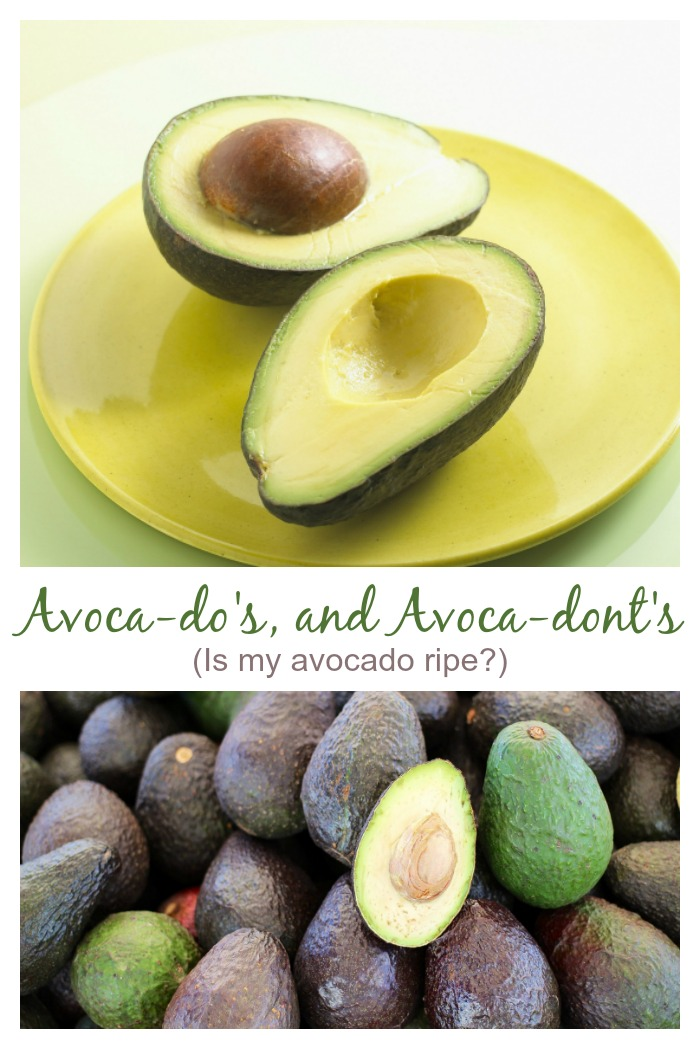 avoca-dos and avoca-don'ts