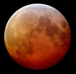 Lunar Eclipse Tonight!