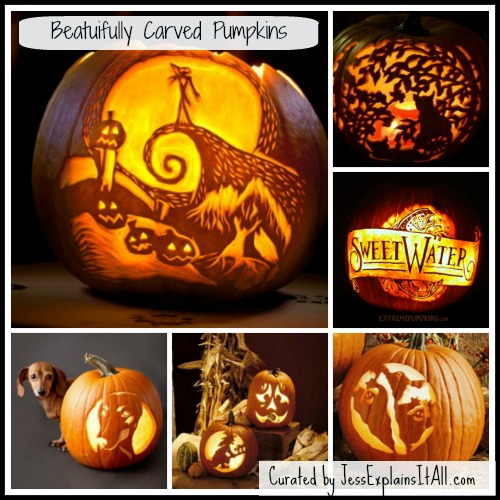 "The Best Carved Pumpkins - <a href=""https://jessexplainsitall.com/the-best-carved-pumpkins/ ‎"" target=""_blank"">Jess Explains It All</a>"