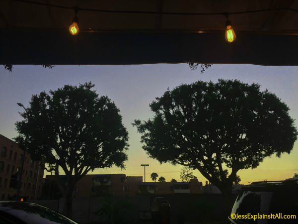 Sunset over trees outside of Figaro Bistrot in LA