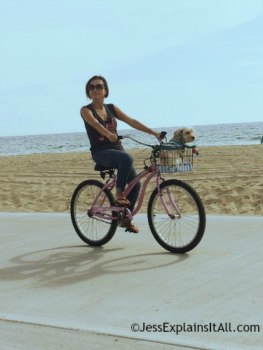 Lady with a dog in her bike basket at Redondo Beach, California.