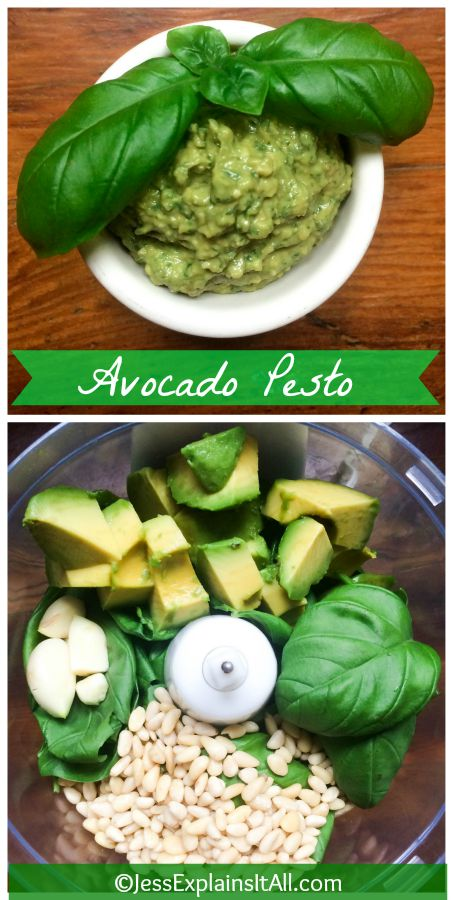 Making Avocado Pesto