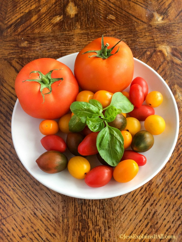 I love summer because all of my favorite foods are in season - specifically tomatoes! Check out my recipe for a simple and delicious tomato plate. www.JessExplainsItAll.com