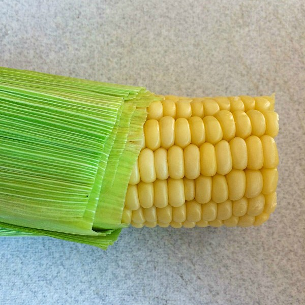 Corn with no silk