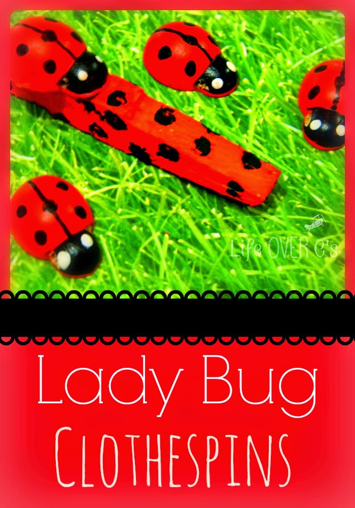 Lady Bug Clothes Pins