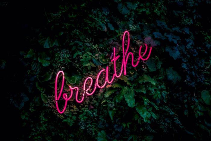 A neon sign reading breathe on an ivy covered wall.